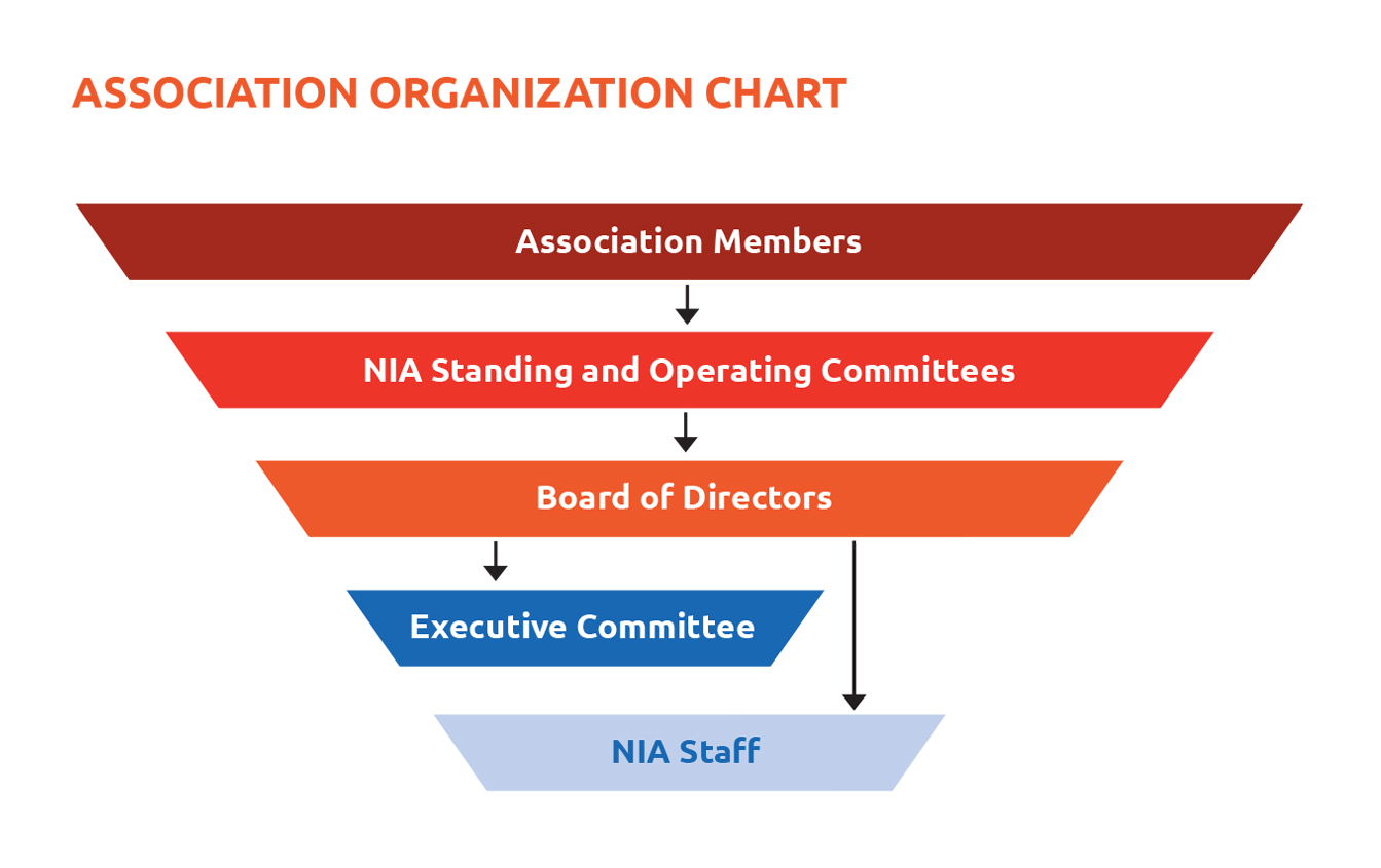Organization structure nia mission statement pooptronica Choice Image
