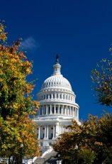 Advocacy & Outreach Landing Page Capitol Dome image
